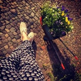 Sooooo verliebt in der Elefanten-Hose von @sugarhillboutique  HAPPY WEEKEND! #halloherz #berlin #kastanienallee #ootd #sugarhillboutique #elefant #flowers #sun #spring #love #omg #liebe #herzchenindenaugen #wowzy