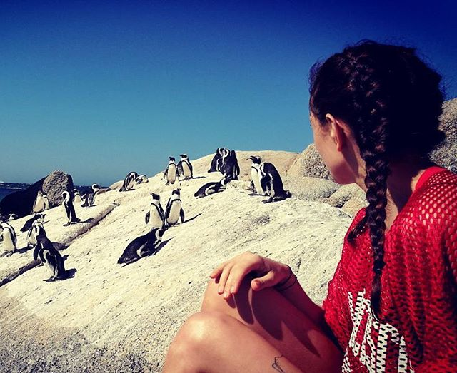 Ich bleib hier! Für immer!  #halloherz #berlin #kastanienallee #capetown #boulderbeach #penguin #travel #animal #goplayoutside #nature #bluesky #heartbeat #heart #fashion #style #shopping #liebe #love