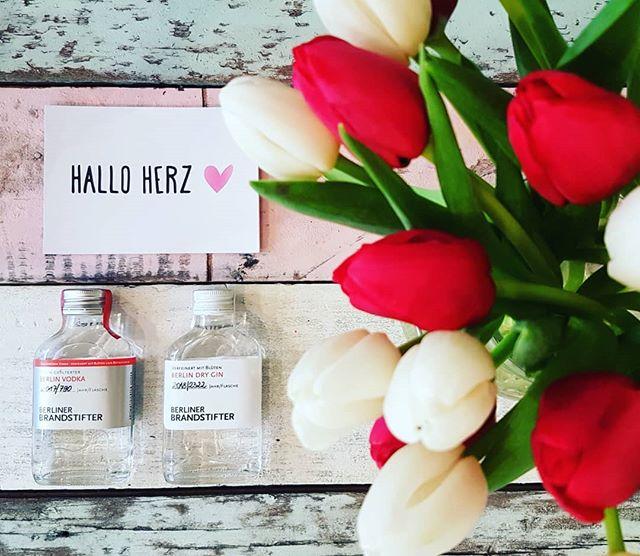 Kein Alkohol ist auch keine Lösung!  HAPPY WEEKEND  Ab heute ist unser Herz BRANDSTIFTER!!!  @berlinerbrandstifter + Hallo Herz =  #halloherz #berlin #kastanienallee #brandstifter #berlinerbrandstifter #vodka #gin #cheers #drinks #weekend #friday #fridaymood #mood #flowers #tulips #girlpower #girlboss #style #fashion #shopping #girls #fashiongoals #love #liebe #supportyourlocals
